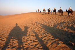 Camel Trekking in the Thar desert (Wikipedia)